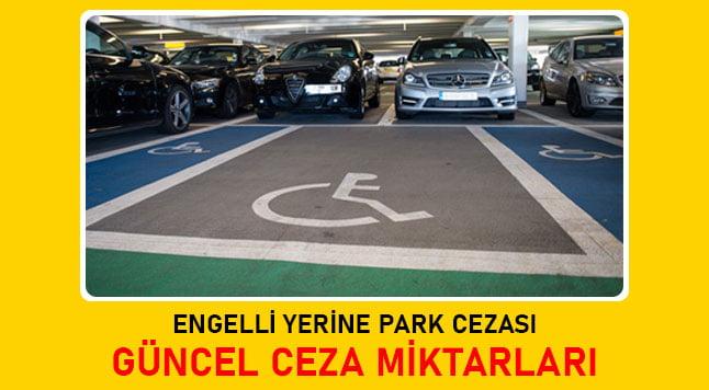 engelli yerine park cezası